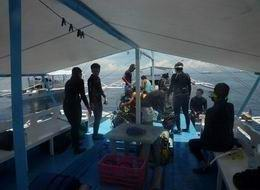 Discovery Diving Nalusuan Islsnd